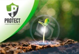 Tratamento de semente: a evolução de uma semente forte e segura