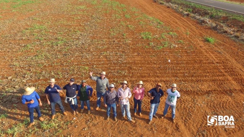 Boa Safra realiza plantio em áreas pólos da revenda parceira Lavoro Agro em Brasnorte/MT