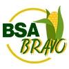 BSA BRAVO