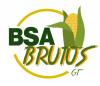 BSA BRUTUS