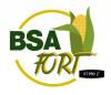 BSA FORT