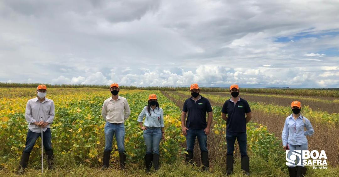 Boa Safra visita área de melhoramento de soja Monsoy